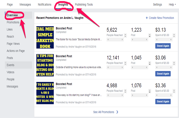 Create Facebook Ads Insights-Overview Tab