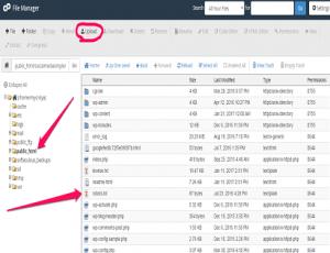 Upload Google File and RobotTxt (Blogging Tips)